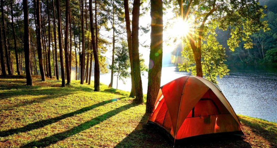 Family Tent Store: Choosing Between a Campground or Camping in the Woods